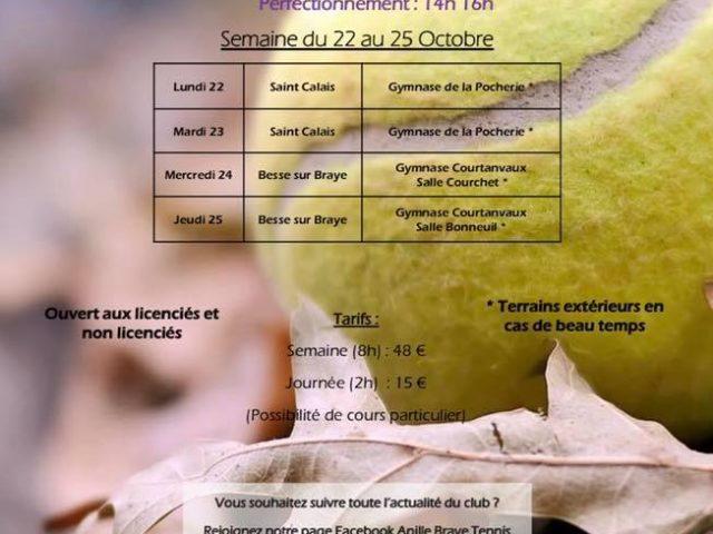 Stages de tennis à Saint Calais et Bessé sur Braye