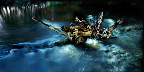 Exposition de photographies par Patrick Perroquin